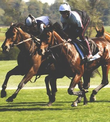 Stag Weekends - Fancy a Flutter - Horse Racing