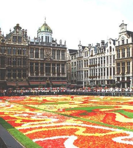 Colourful carpet of flowers in front of the Grand Palace. Explore Brussels Stag Party Idea